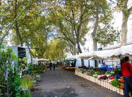 Tours flower market in the Loire Valley